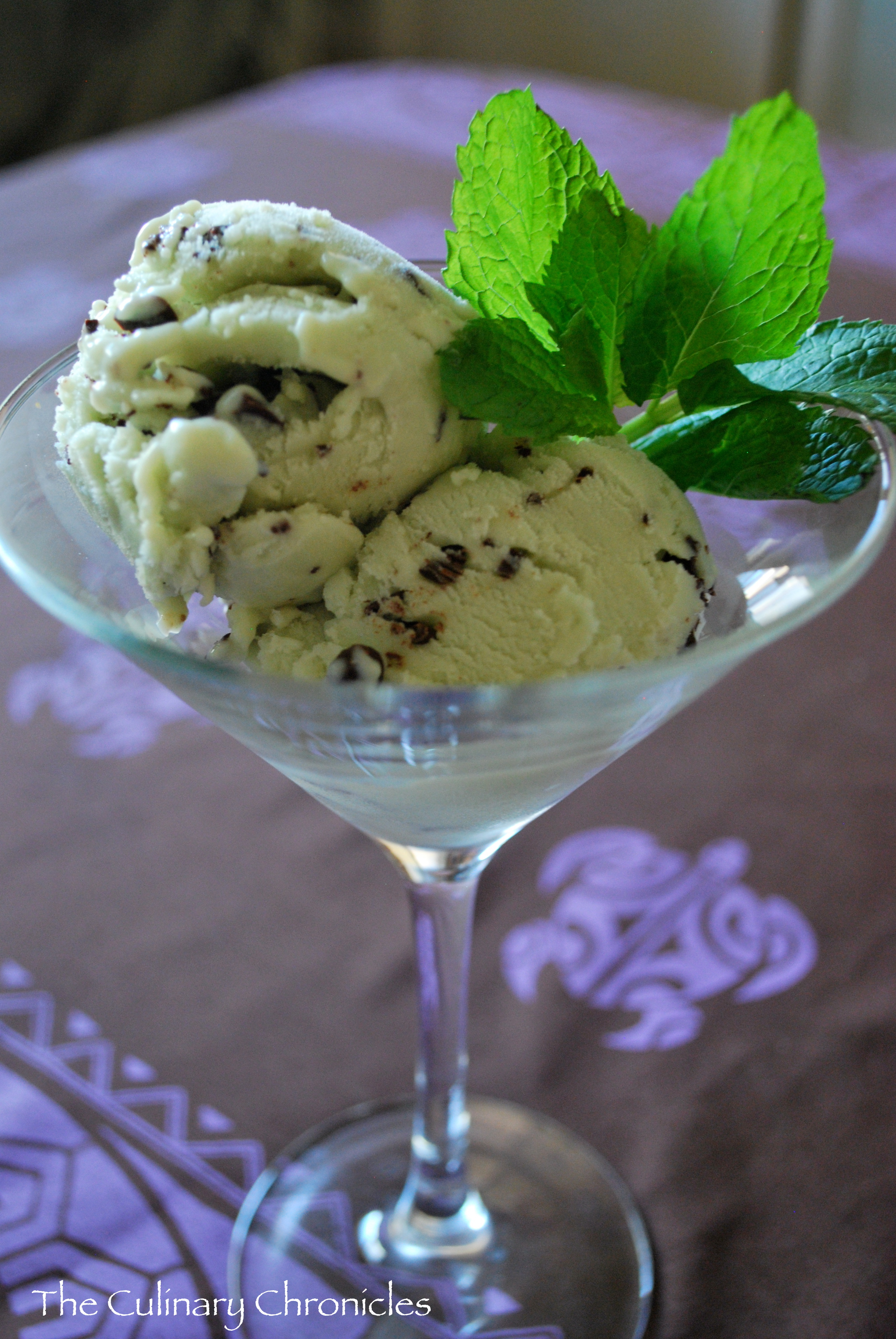 Mint Chocolate Gelato